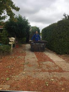 Empty skip - the start of our AirBNB
